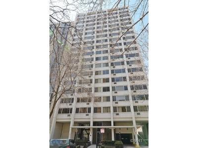 Condo/Townhouse New: 1344 North Dearborn Street #7C