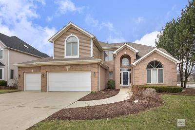 Naperville Single Family Home New: 2303 Fox Boro Lane