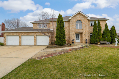 Tinley Park Single Family Home For Sale: 7925 172nd Street