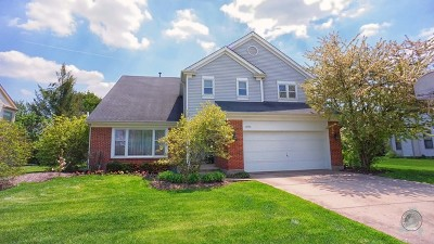 Buffalo Grove Single Family Home Contingent: 2789 Whispering Oaks Drive