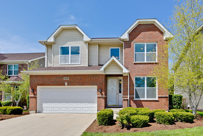 Buffalo Grove Single Family Home For Sale: 330 Raymond Road
