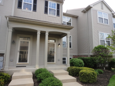 Grayslake Condo/Townhouse For Sale: 752 Cherry Creek Drive