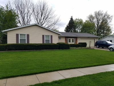 Ogle County Single Family Home For Sale: 208 Linder Lane
