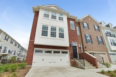 Schaumburg Condo/Townhouse For Sale: 34 Dana Catherine Street