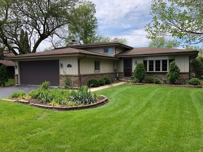 Naperville Single Family Home New: 29w280 103rd Street