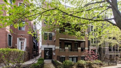 Condo/Townhouse New: 839 West Bradley Place #3