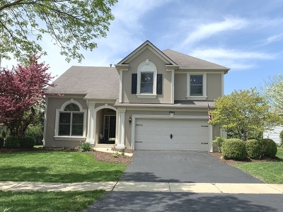 Naperville Single Family Home New: 4864 Snapjack Circle