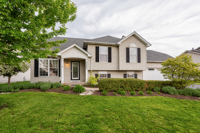 Plainfield Single Family Home For Sale: 24860 Madison Street
