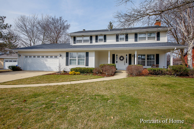 Wheaton Single Family Home For Sale: 141 Tennyson Drive