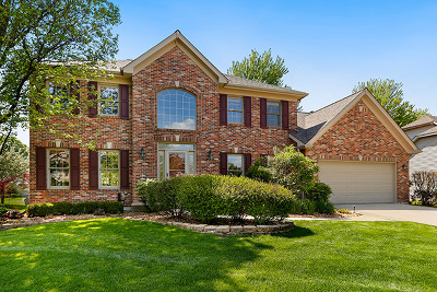 Naperville Single Family Home New: 4107 Joe Willie Drive