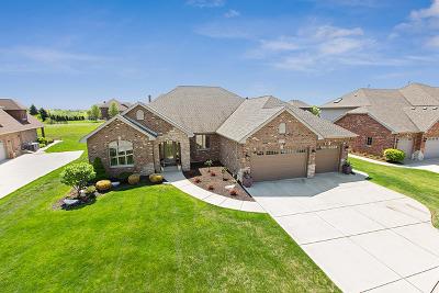 Lemont Single Family Home New: 12565 Thornberry Drive