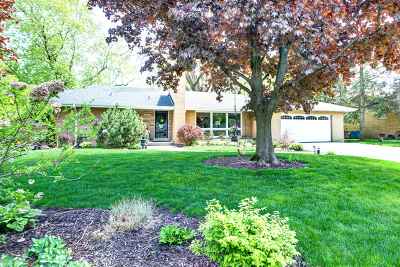 Palos Heights, Palos Hills Single Family Home For Sale: 12533 South 69th Court