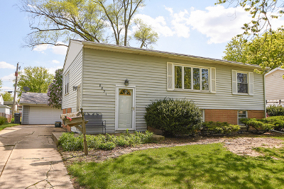 Orland Park Single Family Home New: 8831 Golfview Drive