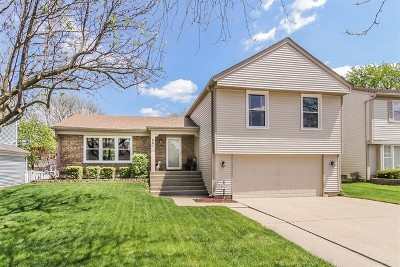Schaumburg Single Family Home For Sale: 661 Primrose Lane