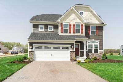 Gilberts Single Family Home For Sale: 890 Sunburst Lane