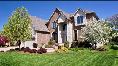 Naperville Single Family Home For Sale: 1971 Saddle Farm Lane