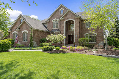 Downers Grove Single Family Home New: 733 Millbrook Drive