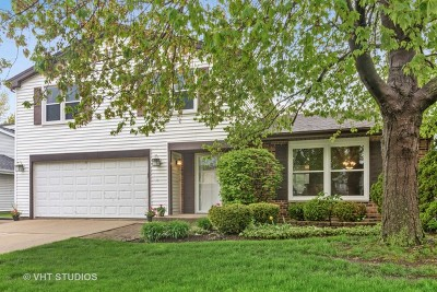 Buffalo Grove Single Family Home Contingent: 916 Thornton Lane