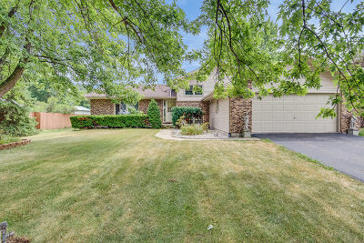 Naperville Single Family Home New: 28w775 87th Street
