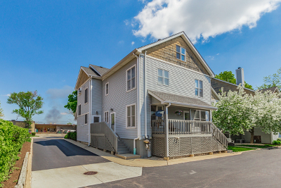 Palatine Condo/Townhouse New: 55 West Johnson Street