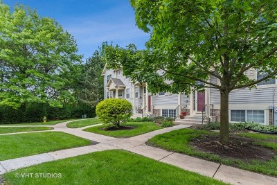 Grayslake Condo/Townhouse New: 18598 West Sterling Court