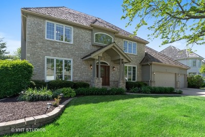 Naperville Single Family Home New: 2220 Palmer Circle