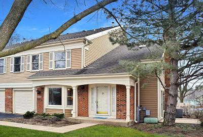 Arlington Heights IL Condo/Townhouse New: $249,999