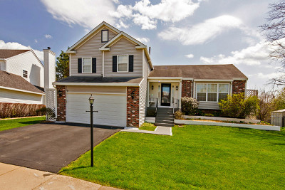 Streamwood Single Family Home For Sale: 3 Blackberry Court