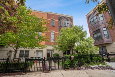 Chicago Condo/Townhouse New: 721 West 15th Street