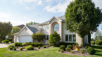Orland Park Single Family Home For Sale: 11100 Saratoga Drive