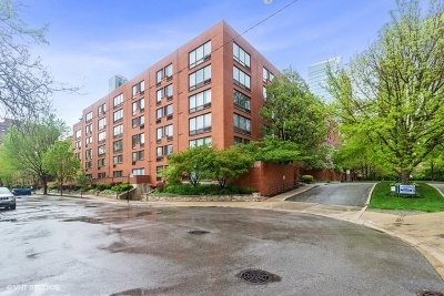 Chicago Condo/Townhouse New: 1169 South Plymouth Court #119