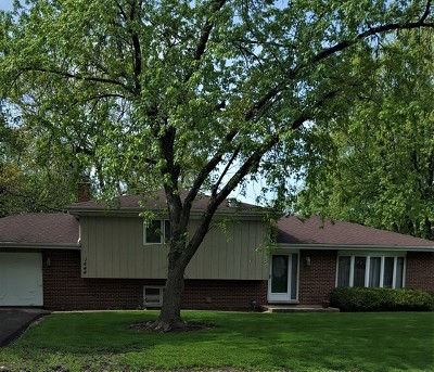 Palatine Single Family Home For Sale: 1644 North Denise Avenue