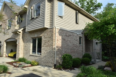 Wood Dale IL Condo/Townhouse For Sale: $332,000