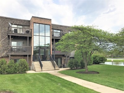 Du Page County Condo/Townhouse New: 1426 Stonebridge Circle #K2