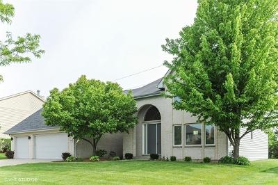 Buffalo Grove Single Family Home For Sale: 1959 Sheridan Road