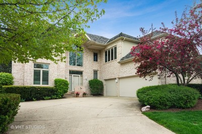 Vernon Hills Single Family Home For Sale: 869 Creek Bend Drive