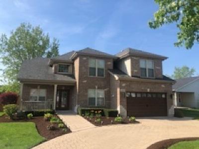 Bolingbrook Single Family Home New: 218 Homewood Drive