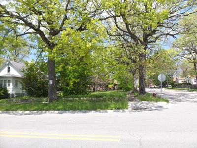 Joliet Residential Lots & Land New: 1027 Woodruff Road