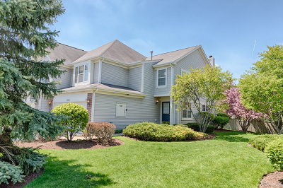 Naperville Condo/Townhouse New: 3083 Serenity Lane
