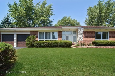 Palatine Single Family Home New: 1048 West Skylark Drive