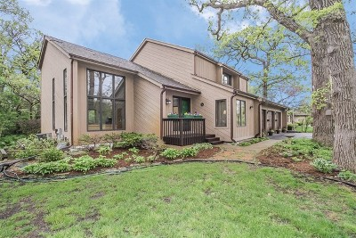 Du Page County Single Family Home New: 29w256 Oak Lane