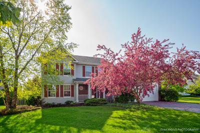 Oswego Single Family Home New: 719 Churchill Lane