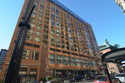 Cook County Condo/Townhouse New: 520 South State Street #706