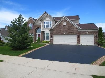 Carpentersville Single Family Home For Sale: 4035 Stratford Lane