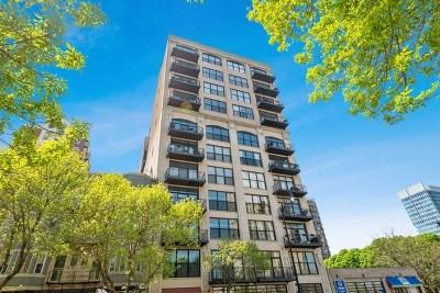Condo/Townhouse New: 1516 South Wabash Avenue #307