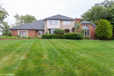 Burr Ridge Single Family Home For Sale: 8261 Ridgepoint Drive