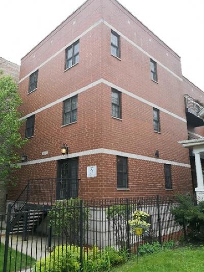 Chicago Multi Family Home New: 1625 West Morse Avenue