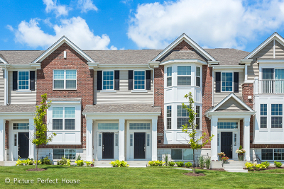 Naperville Condo/Townhouse New: 2967 Madison Drive East