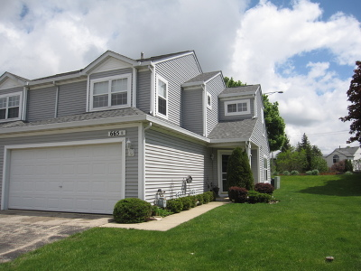 South Elgin IL Condo/Townhouse For Sale: $172,000