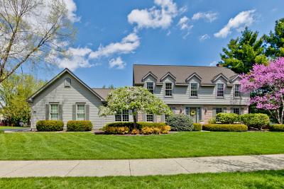 Vernon Hills Single Family Home For Sale: 52 White Barn Road